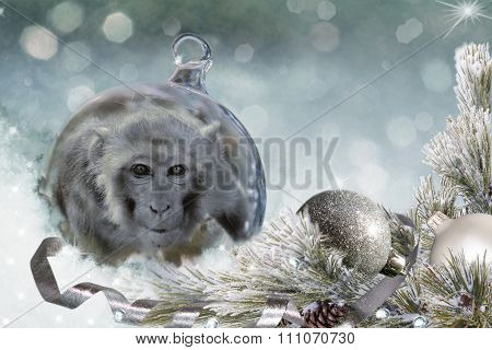 Christmas Ball With Monkey On Snow.