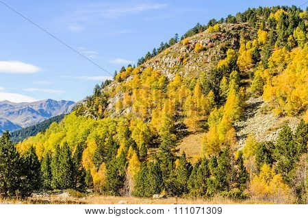Colorful Fall Landscape In The Valley Of Estanyo River, Andorra