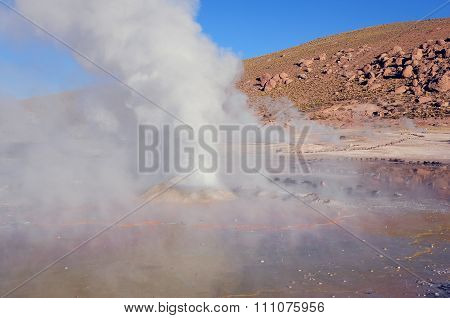 Early Morning View Of The Geysers.
