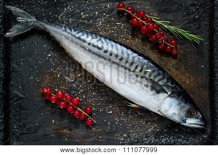 Mackerel With Red Currants And Spices