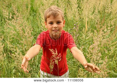 Little Boy In Red Shirt Stands In High Green Grass And Touches Blade Of Grass