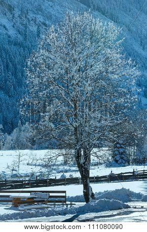Country Winter View (austria, Tirol)