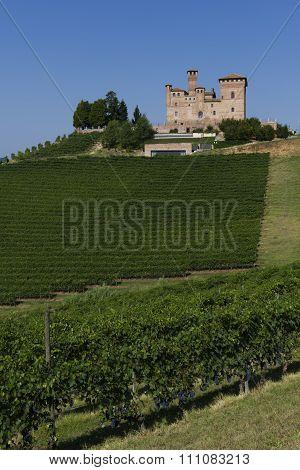 Summer View In The Langhe Unesco Heritage