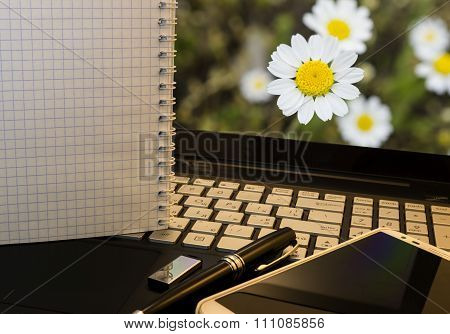 Office Workplace With Notebook, Smart Phone, Pen, Flash Drive And Wordpad With Flowers Background