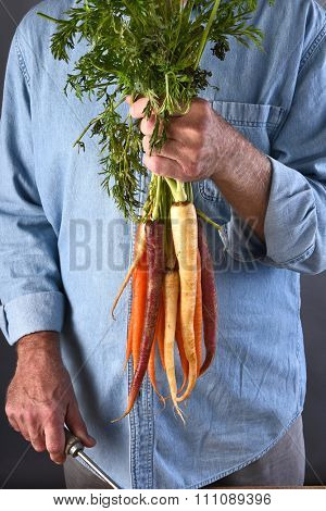 Closeup of a farmer holding up his fresh picked local grown organic carrots. Vertical format.