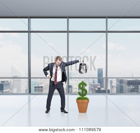Businessman Watering Money, Growth