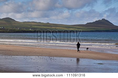 Jogger with dog at the beach