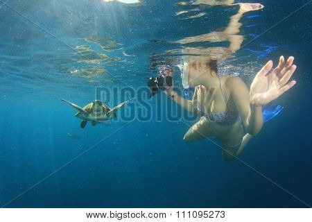 Sea Turtle and young woman snorkeling and photographing