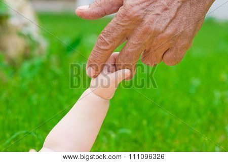 grandad's and baby's hands outdoors on green