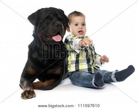 Little Boy And Rottweiler