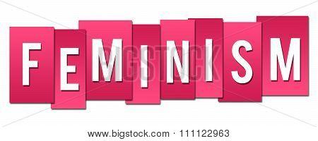 Feminism Pink Stripes