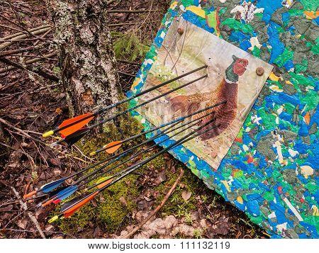 target partridge