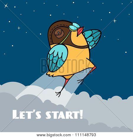 Start of bird pilot to the sky