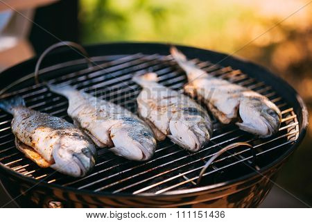 Fish fried on the grill outdoor