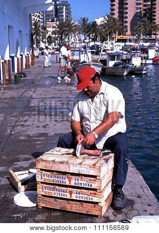 Fisherman gutting fish, Fuengirola.