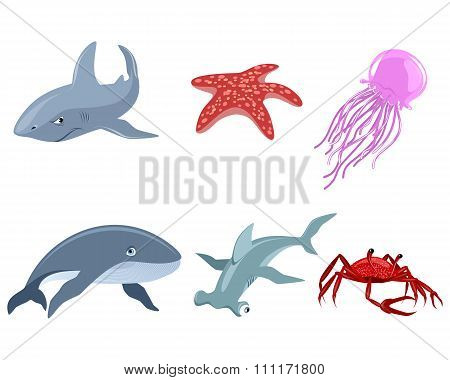 Six Marine Inhabitants