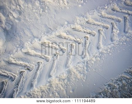 The Imprint Tread Of The Tractor Wheels In Snow.