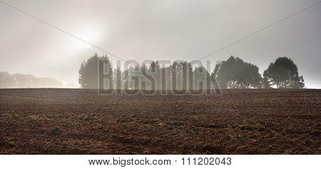 Plowed Autumnal Field Landscape