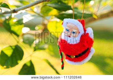 Christmas Decorations  on chrismas tree in garden background