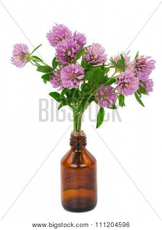 Medicine bottle with clover flowers