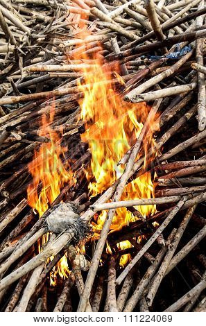 fire burn wood