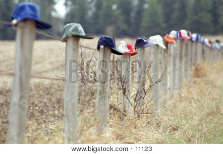 Caps On Fence Posts