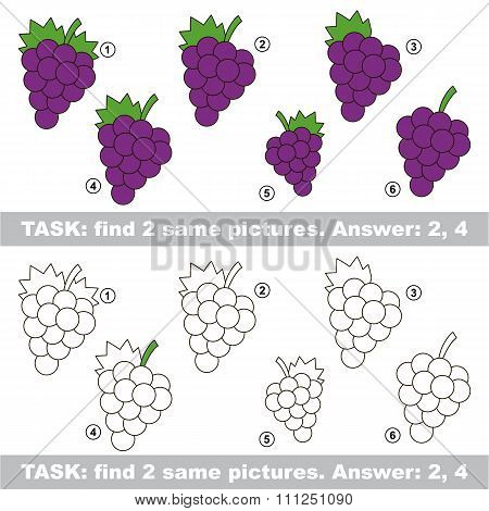 Visual game. Find hidden couple of Grapes