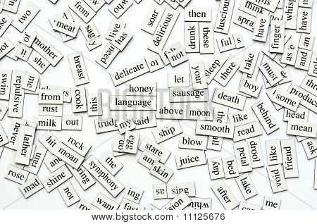 Assorted Magnetic Words