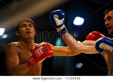 Muay Thai Boxing Uppercut Sweat Flying