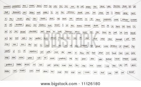 200+ Magnetic Words