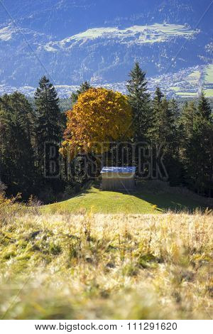 View Across An Alpine Valley With Autumn Trees
