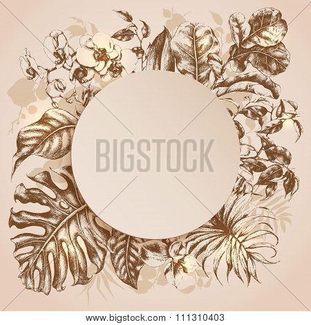 Tropical Plants Frame.