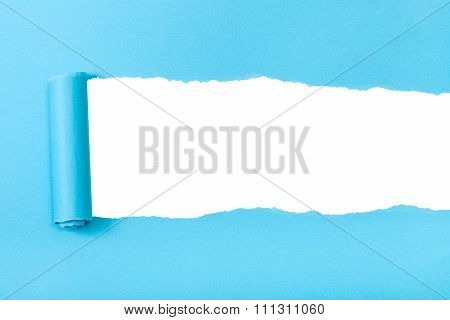 Blue Rolled-up Torn Paper On White Isolated