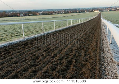 Newmarket racehorse gallops