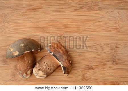 Mushroom Arrangement
