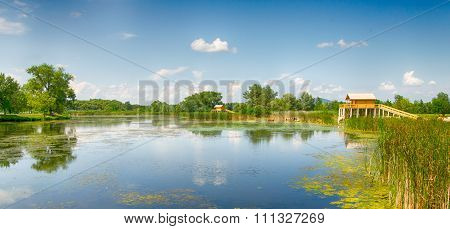 Summer landscape - lake, two stilt houses and chilling cows