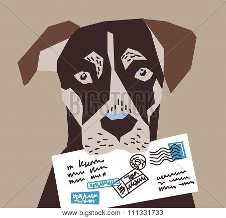 Dog letter post postman contacts.
