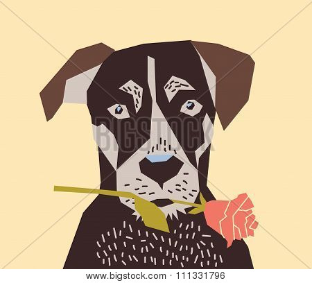 Dog with flower rose love.