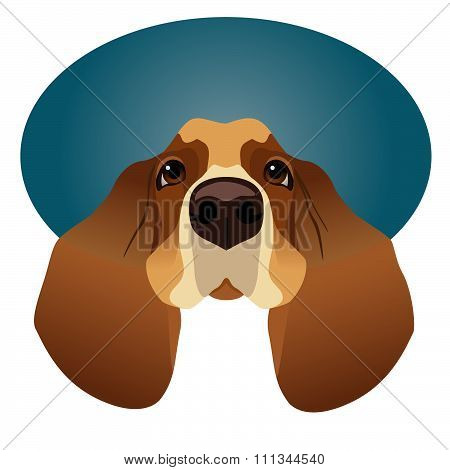 Basset Hound isolated on circle blue frame
