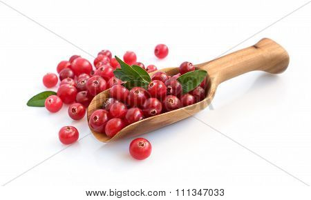 Cranberry With Wooden Scoop