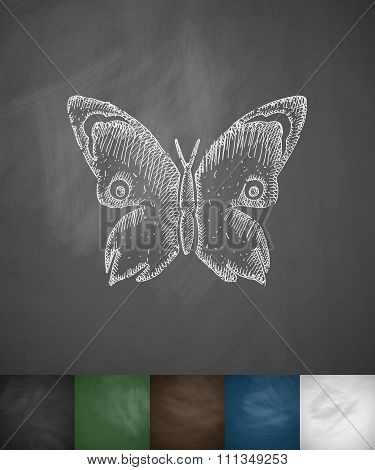 butterfly icon. Hand drawn vector illustration