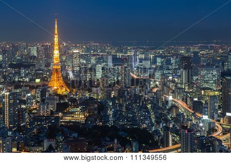Twilight of Tokyo city aerial view with Tokyo tower