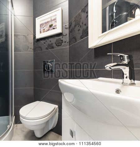Black Tiles In Contemporary Toilet