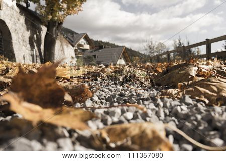 Fallen Leaves On Gravel Road Near Home And Bridge