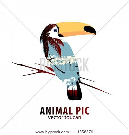 Double exposure illustration of toucan and palm trees