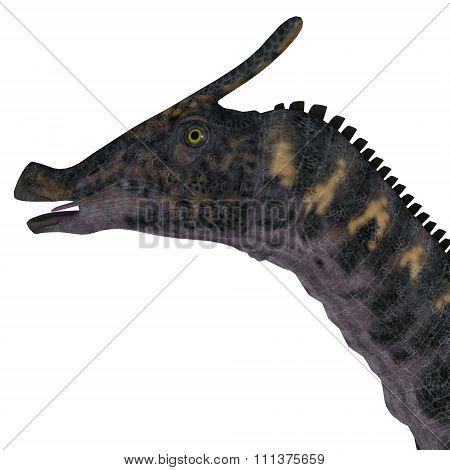 Saurolophus Dinosaur Head