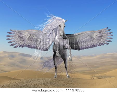 White Pegasus In Desert