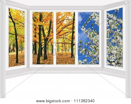 Window Overlooking The Autumn Park And Spring Trees