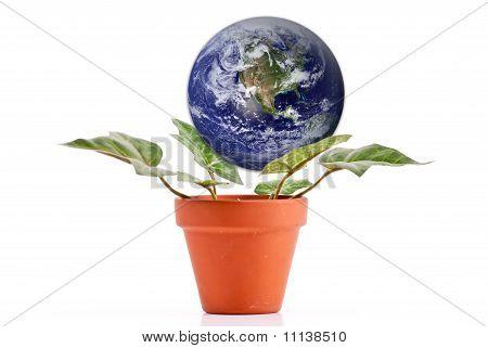 Nurturing The Planet