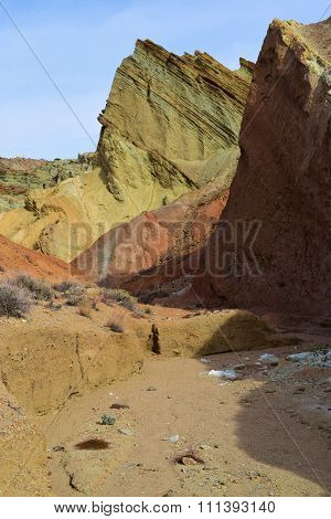 Colorful Mojave Desert
